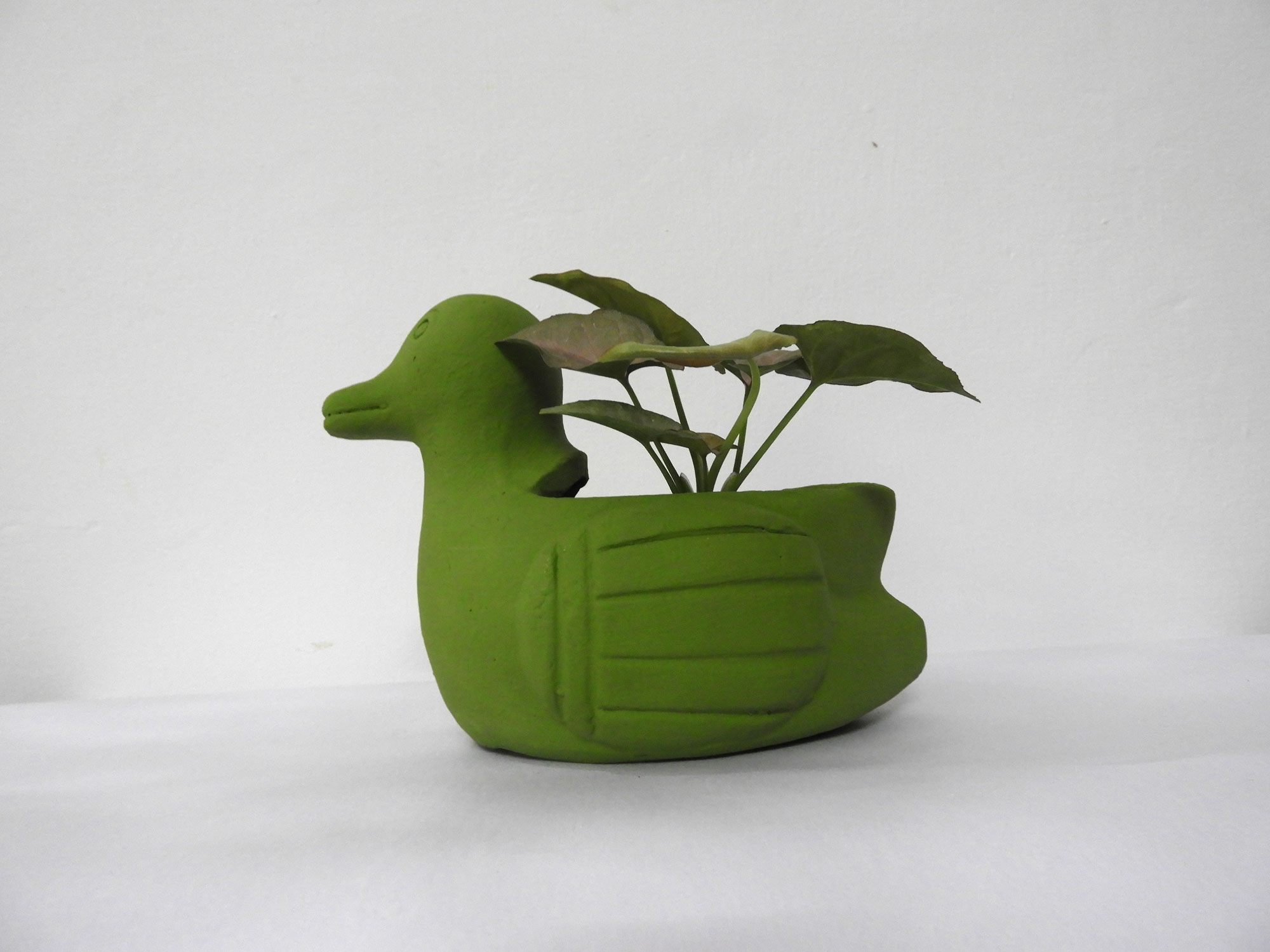 Pot Duck (S) - gardening pots for sale in yelahanka new town bangalore