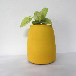 Pot Barrel(S)