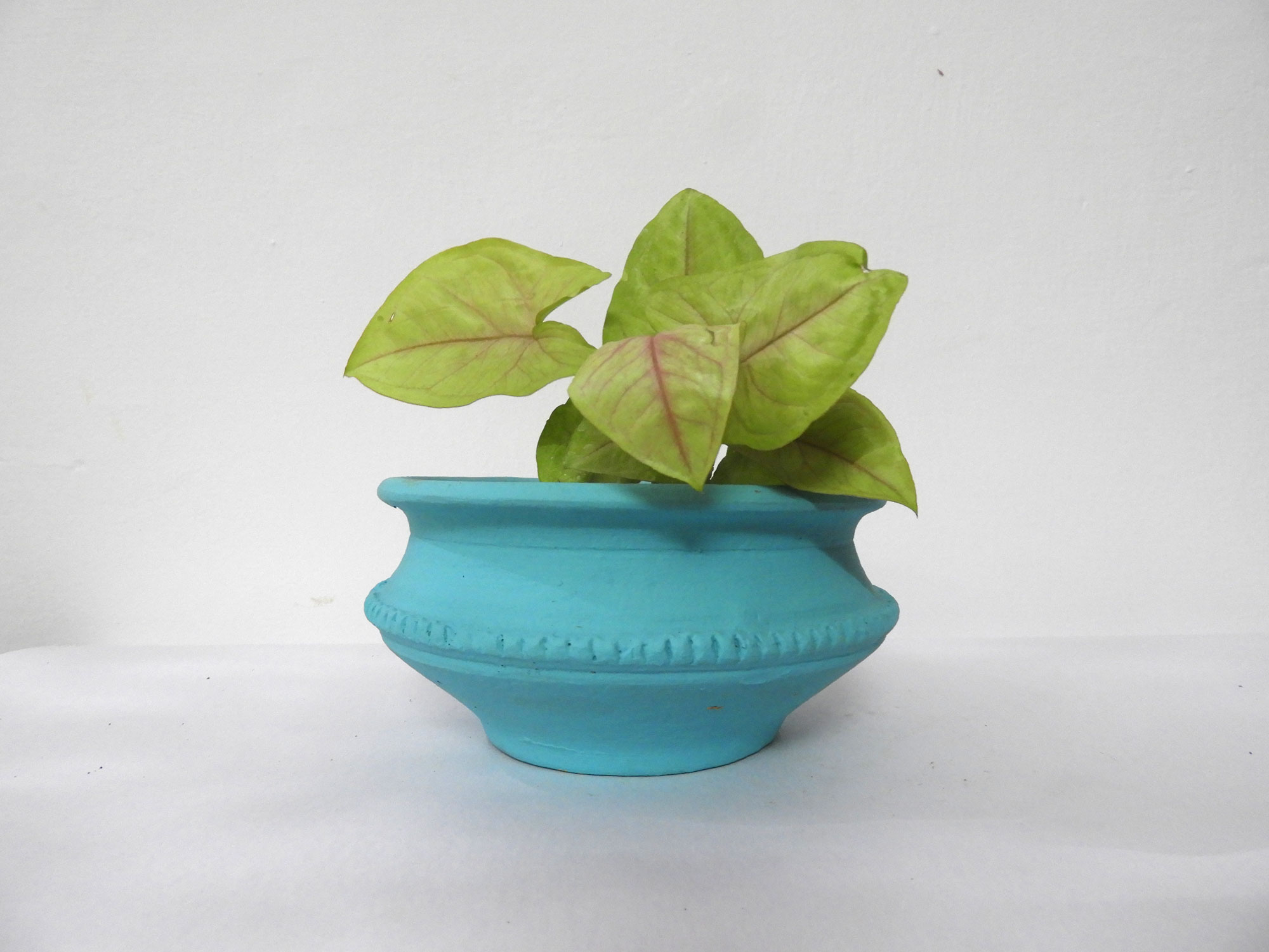 Pot Bowl (S)