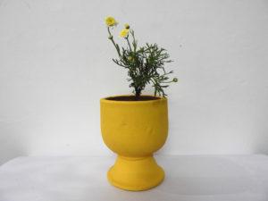 Pot World Cup (S) - garden pots design in yelahanka