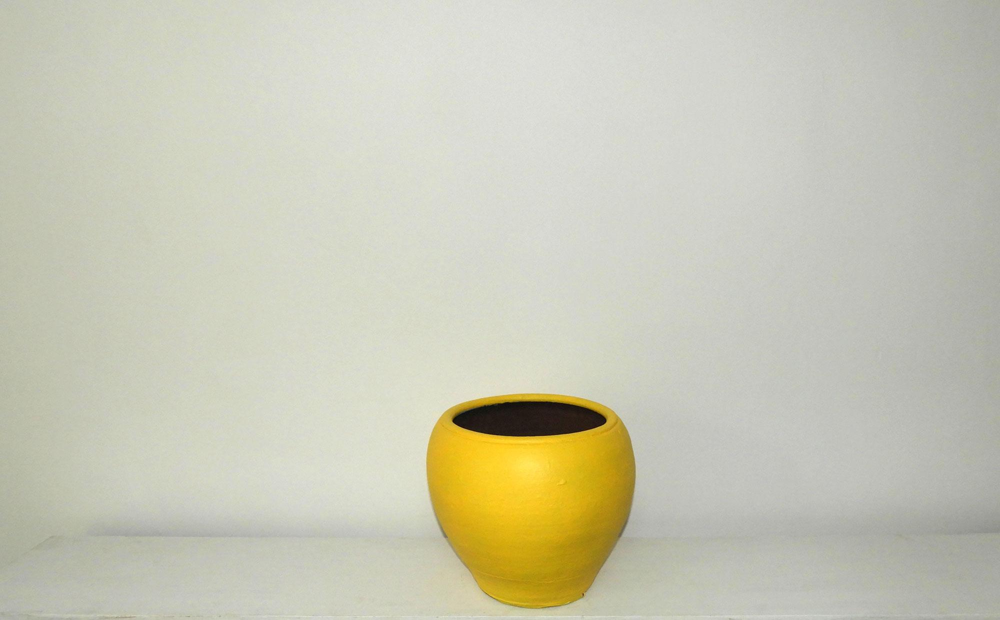 Pot Dome (M)