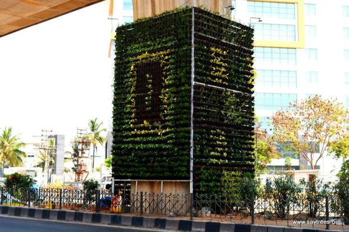 vertical garden designers in bangalore