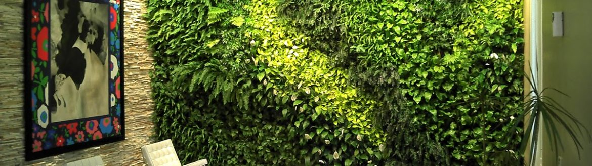 vertical garden designing in bangalore