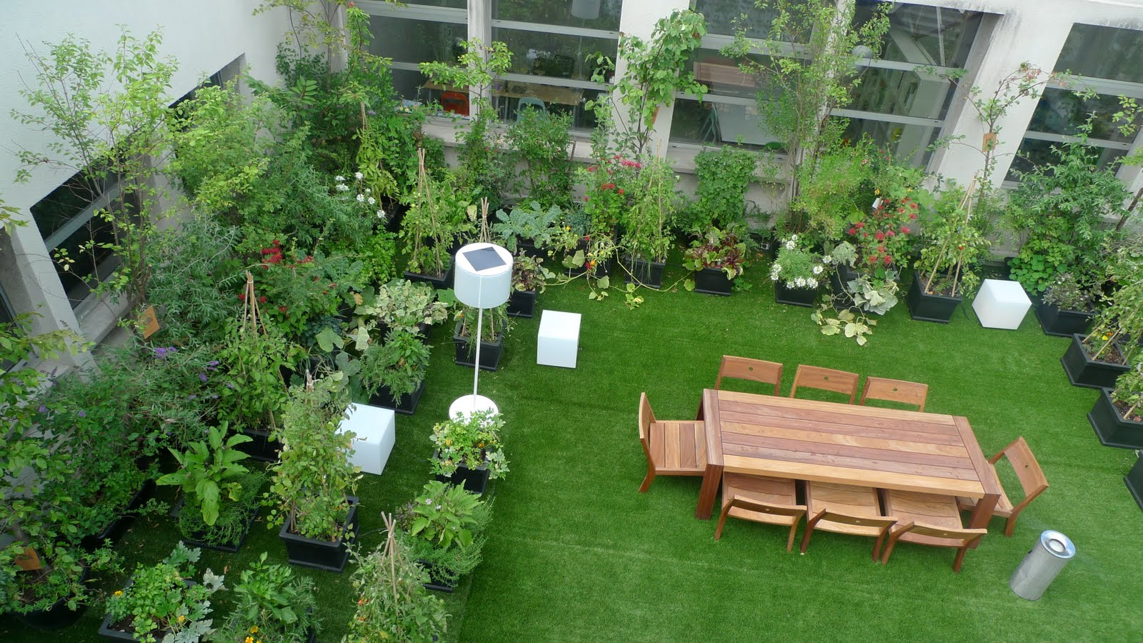 Importance Of Terrace Gardening In Bangalore   A Beginneru0027s Guide   Grow  And Glow Gardens