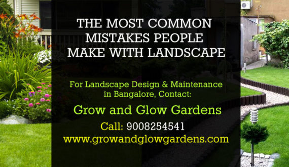 THE MOST COMMON MISTAKES PEOPLE MAKE WITH LANDSCAPE - grow and glow gardens