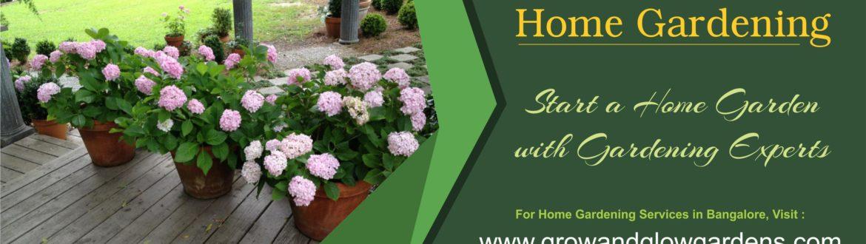 Home Gardening in Yelahanka, Grow & Glow Garden